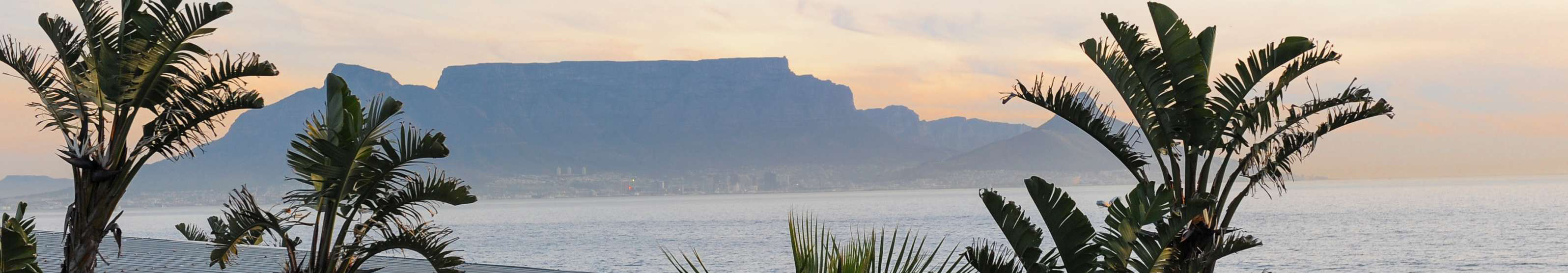 table-mountain-banner-3